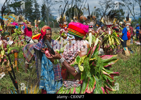 Tribal performers at Mt Hagen show in Papua New Guinea wearing bird of paradise plumes in head dresses - Stock Photo