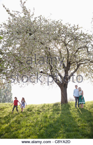 Family playing under tree in park - Stock Photo