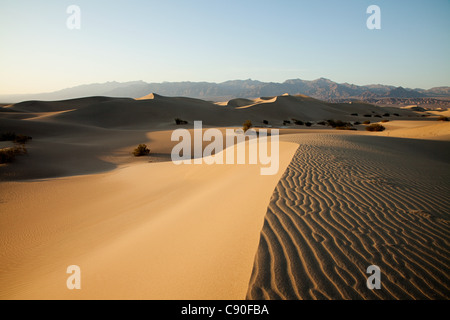 Mesquite Flat Sand Dunes, Death Valley, Nevada, USA - Stockfoto