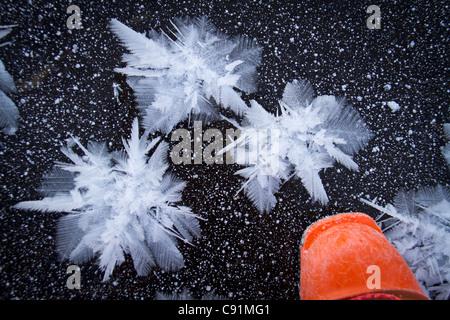 Ice crystal growing on creek ice with orange ski boot near the Johnson Pass trailead, Turnagain Pass, Kenai Mountains, - Stock Photo
