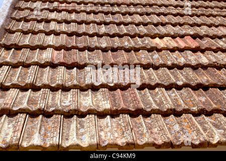 Old flat red clay roof tiles with lichen stock photo for Buy clay roof tiles online