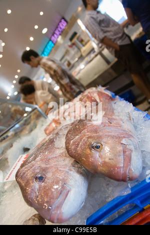 Sydney fish market new south wales australia stock photo for 99 5 the fish