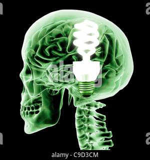 Brain with green light bulb, Digitally Generated Image by Hank Grebe - Stockfoto