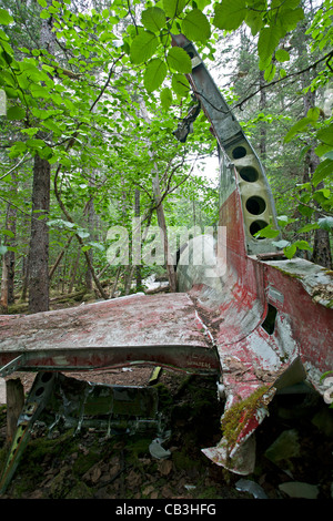 1957 DC-3 plane crash. Gustavus. Glacier Bay. Alaska. USA - Stock Photo