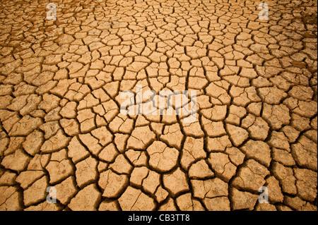 Cracked soil in Sarigua National park (desert) in the Herrera province, Republic of Panama. - Stock Photo