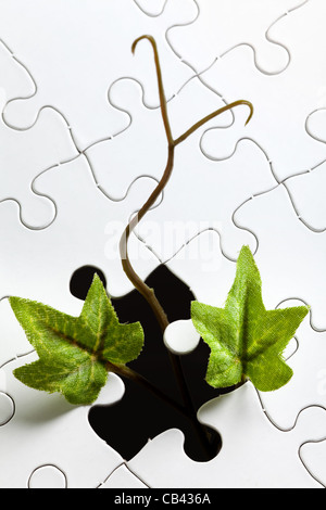 ivy and Puzzle, business concept - Stock Photo