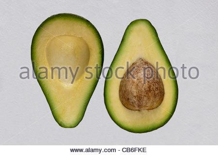 Fuerte avocado pear - Stock Photo