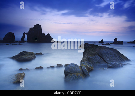 Fog rolling over rocky beach - Stockfoto