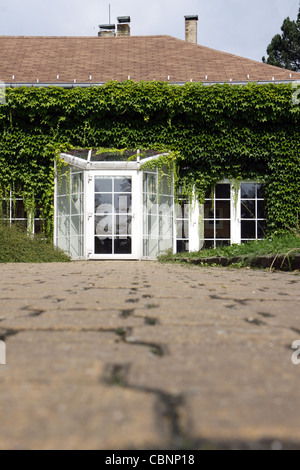 modern building with glass doors and ivy - Stock Photo