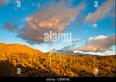Four Peaks (Yavapai: Wikopa, at 7657 feet (2335 m) in altitude, is a prominent landmark on the eastern skyline of - Stock Photo