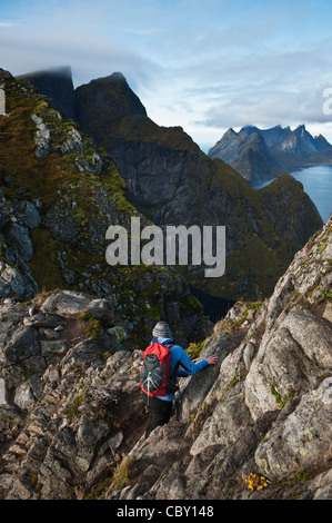 Female hiker climbs rocks on Reinebringen, Lofoten Islands, Norway - Stockfoto