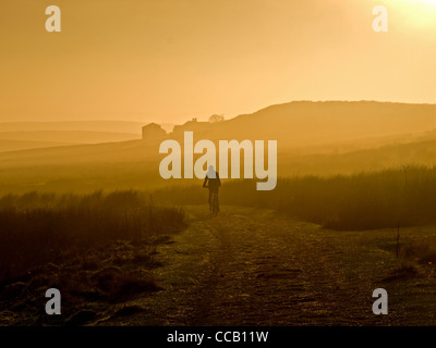 Mountain biker riding across moorland track on Axe Edge in late afternoon sun, Peak District - Stock Photo