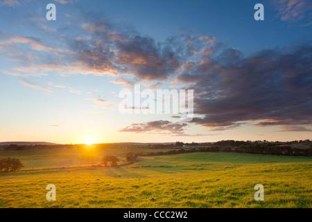 Meadow sunset, County Mayo, Ireland. - Stock Photo