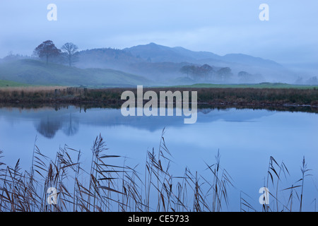 River Brathay on a misty morning near Elterwater, Lake District, Cumbria, England. Autumn (November) 2011. - Stock Photo