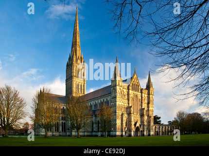 Golden evening light falls on the west facade and spire of Salisbury Cathedral, Wiltshire, England, UK - Stock Photo