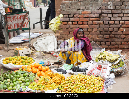 Woman street seller in traditional sari dress in New Delhi, India with her goods arranged on the pavement, with - Stock Photo
