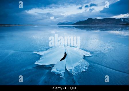 Ice formation of frozen coast of Ytterpollen, Lofoten Islands, Norway - Stock Photo