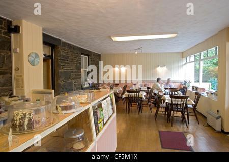 Dolgoch Falls Tea Room