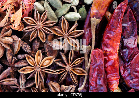 Indian cooking spices pattern - Stock Photo