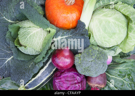 Close up of bowl of produce - Stock Photo