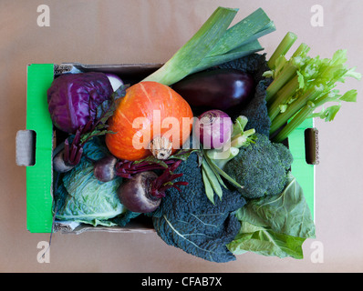 Close up of box of produce - Stock Photo