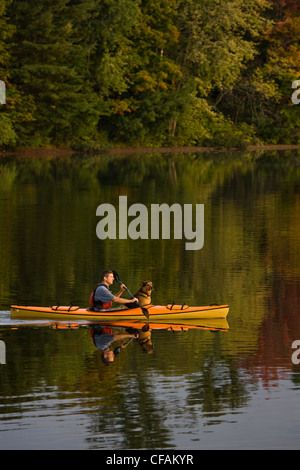 Young man kayaking with dog on Gull Lake near Gravenhurst, Ontario, Canada. - Stock Photo