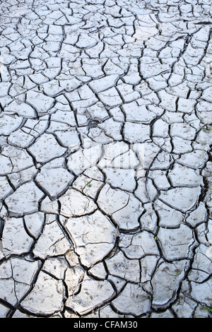 Cracked clay mud in the Red River Valley. Winnipeg, Manitoba, Canada. - Stock Photo