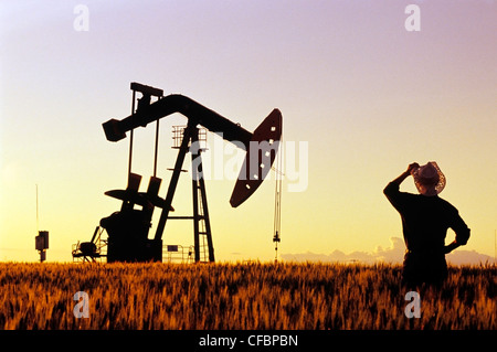 A farmer looks out over a maturing wheat crop with an oil pumpjack in the background near Carlyle, Saskatchewan, - Stock Photo
