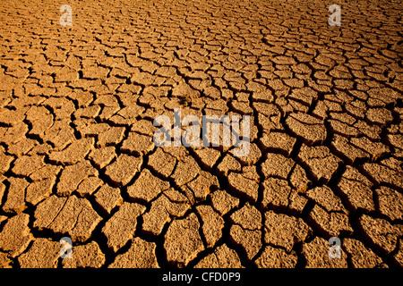 Landscape in Sarigua national park (desert) in Herrera province, Republic of Panama. - Stock Photo