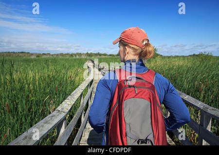 Woman hiking on wooden boardwalk in Grassy Narrows Marsh. Hecla Island Provincial Park, Manitoba, Canada. - Stock Photo