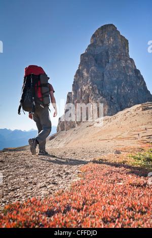Ein Mann ist auf Schloss Berg, Banff Nationalpark, Alberta, Kanada wandern. - Stockfoto
