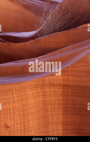 Canyon Wall Lit From Below - Stock Photo