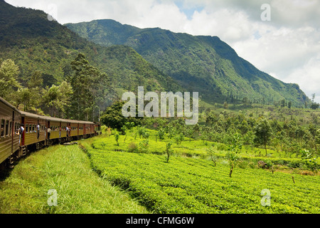 The scenic train ride through the Central Highlands, with its mountains and tea plantations, near Nuwara Eliya, - Stockfoto