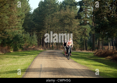 A couple cycling on the road in Thetford Forest, Norfolk UK - Stock Photo