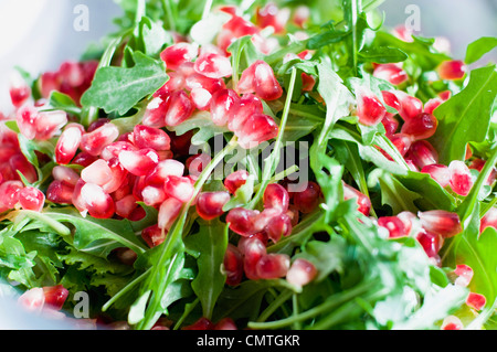 Salad with pomegranate - Stock Photo