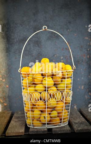 Close-up of basket with lemons - Stock Photo