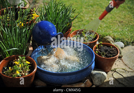 Solar Powered Garden Water Feature Blue Bowl By Pot Plants