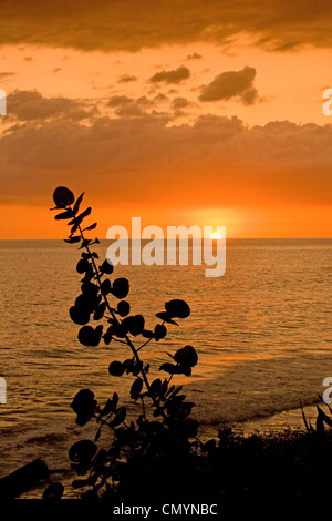 Jamaica Treasure beach sunset - Stock Photo