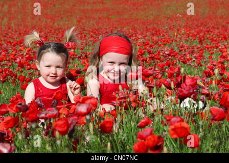 happys summer girls in meadow - Stock Photo