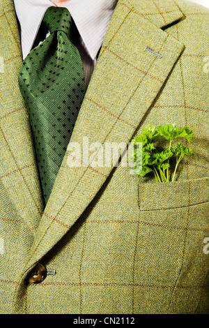 Green checked suit jacket with parsley in pocket - Stock Photo
