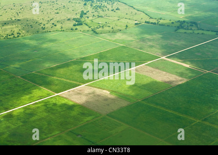 Aerial shot over fields, Dominican Republic - Stock Photo