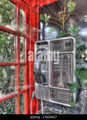 Disused telephone booth with ivy growing inside - Stock Photo