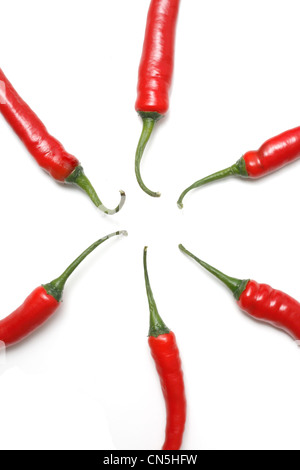 Hot chili peppers isolated on white - Stockfoto