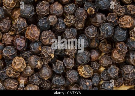 close up of black peppercorns - Stock Photo