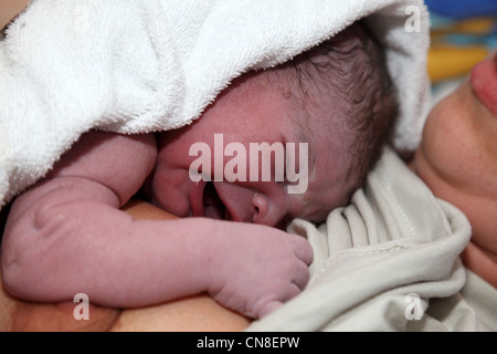 Newborn baby minutes after birth - Stock Photo