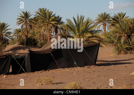 Traditional Berber nomad tents made from camel hair twine, southern Morocco, Sahara desert Africa. - Stockfoto
