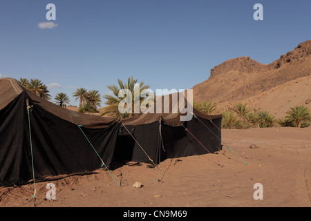 Traditional Berber nomad tents made from camel hair twine, southern Morocco, Sahara desert Africa. - Stock Photo