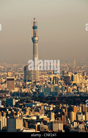 The Tokyo Sky Tree, or New Tokyo Tower, in december 2010, viewed from Ikebukuro Sunshine City obversation deck - Stockfoto