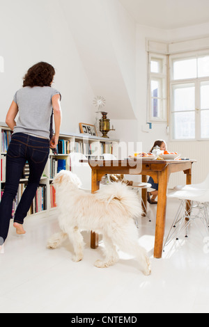 Family playing with dog in kitchen - Stock Photo