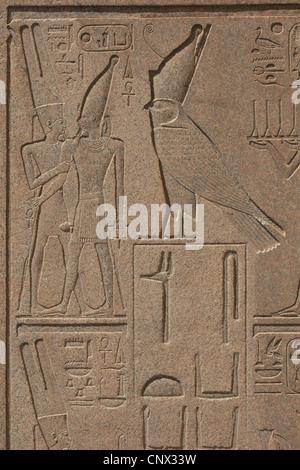 God Horus. Relief in the uninstalled obelisk of Queen Hatshepsut in the Karnak Temple Complex in Luxor, Egypt. - Stock Photo